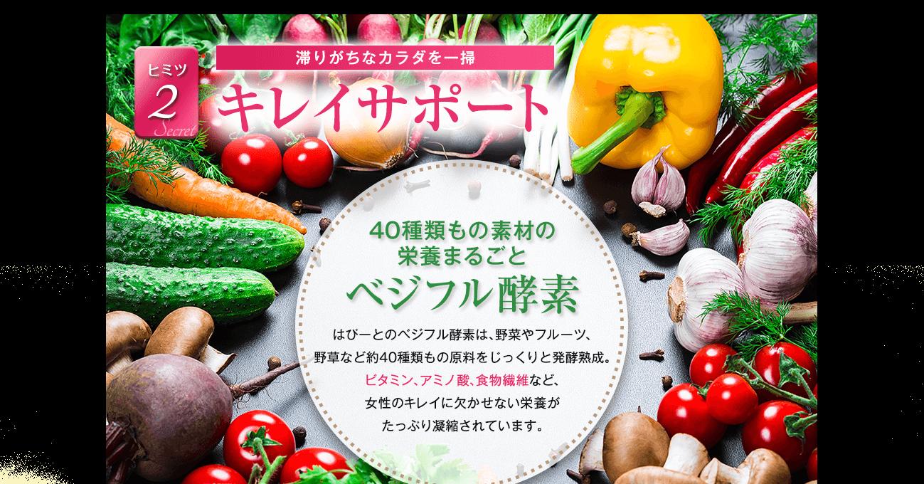 キレイサポート 40種類もの素材の栄養まるごと ベジフル酵素